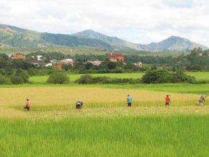 Ambositra-Provinz von Fianarantsoa