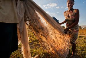 Heuschrecken auf Madagaskar