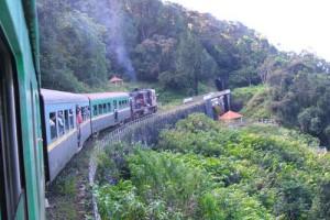 Der Dschungel Express in Madagaskar