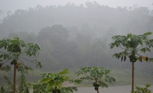 regen in Madagaskar