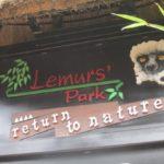 lemurs-park