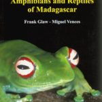 field-guide-to-the-amphibians-and-reptiles-of-madagascar-