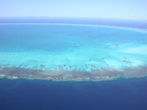 Insel bassas de india