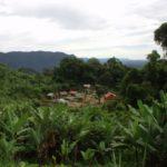 Tsaratanana Reservat