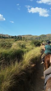 Reiten auf Madagaskar