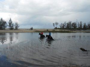 Reiten im Osten von Madagaskar