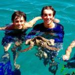 blue-maki-tauchen-schildkröte