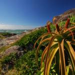 Der tiefe & trockene Süden von Madagaskar