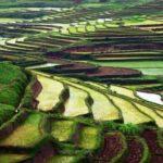 Betafo Wanderung – eine authentische Wanderung auf dem Hochland