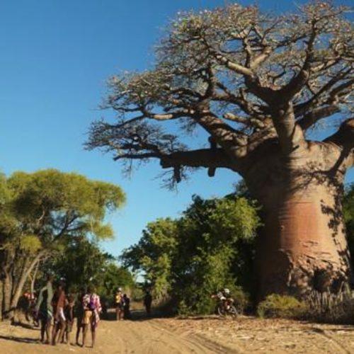 Motorrad Touren auf Madagaskar